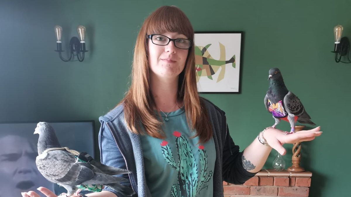 'Pigeon-mad' woman spends £4,000 a year on 'fashionista' rescue pigeons