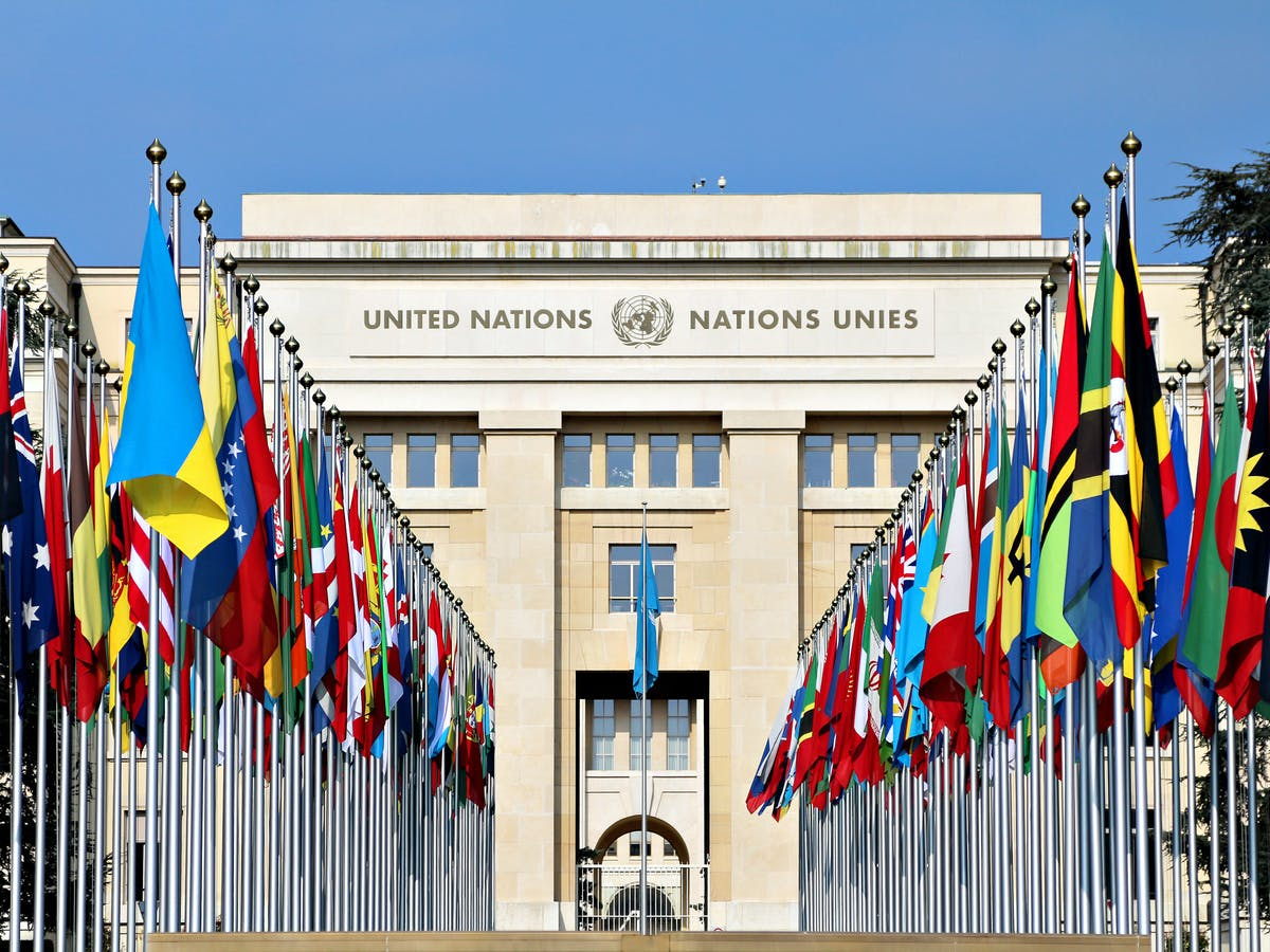 UN declares 'healthy and sustainable environment' a human right