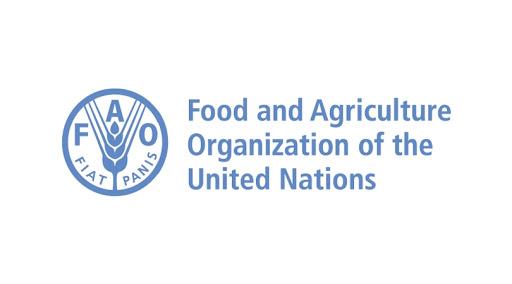 FAO launches ToT program on Farmer Field School approach